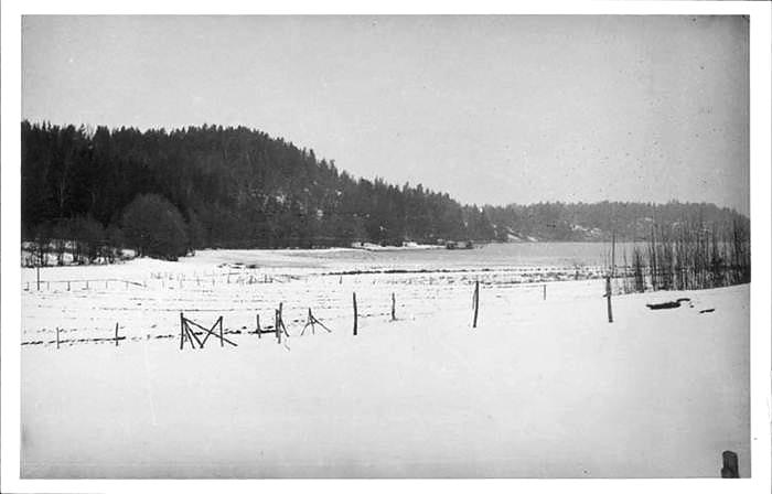 Kåröd kile från söder 1957